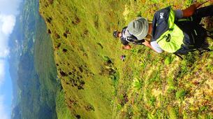 Randonnée / Trekking-La Soufrière-Randonnées sur la Soufrière en Guadeloupe-3