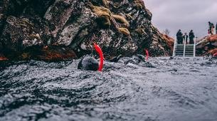 Snorkeling-Silfra-Silfra Rift snorkeling and Golden Circle Tour from Reykjavik-1