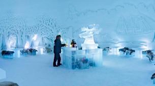 Motoneige-Tromsø-Snowmobile + Ice Domes excursion in Tromsø-5