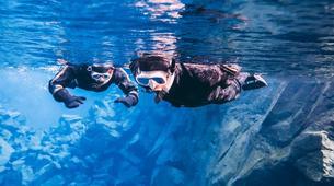 Snorkeling-Silfra-Silfra Rift snorkeling and Golden Circle Tour from Reykjavik-5