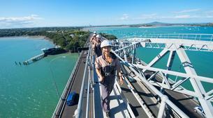 Hiking / Trekking-Auckland-Auckland Bridge Climb and Wine Day Tour-1