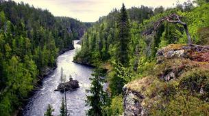 Tierwelt Abenteuer-Rovaniemi-Moose Wild Safari near Rovaniemi-5