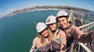 Hiking / Trekking-Auckland-Auckland Bridge Climb and Wine Day Tour-2