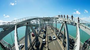Hiking / Trekking-Auckland-Auckland Bridge Climb and Wine Day Tour-6