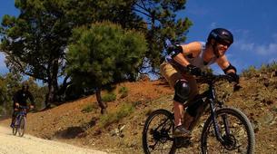 Mountain bike-Sierra de las Nieves Natural Park-MTB Tour in Sierra de las Nieves Natural Park, near Marbella-5