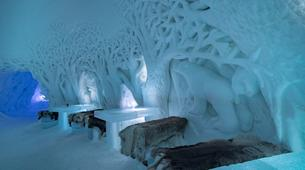 Experiences Wildlife-Tromsø-Dogsledding, Visit to the Tromsø Ice Domes & Reindeer Visit Tour near Tromso, Norway-2