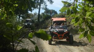 Quad biking-Marbella-Buggy Tour in Sierra de las Nieves Natural Park, near Marbella-2