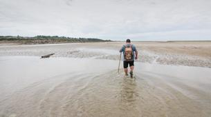 Hiking / Trekking-Baie de Somme-Guided hiking, bird and seal discovery in the Baie de Somme-1