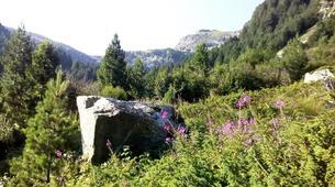 Hiking / Trekking-Sofia-Hiking in the Vitosha Mountains from Sofia-1