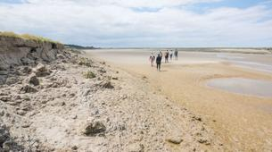 Hiking / Trekking-Baie de Somme-Guided hiking, bird and seal discovery in the Baie de Somme-3