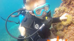 Plongée sous-marine-Antibes-Baptême de Plongée à Antibes-4