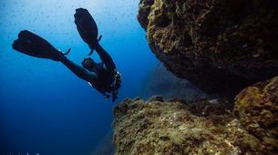Plongée sous-marine-Antibes-Plongée Exploration à Antibes-2