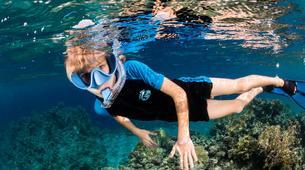 Snorkeling-Antibes-Excursion en bateau et randonnée palmée au Cap d'Antibes-1