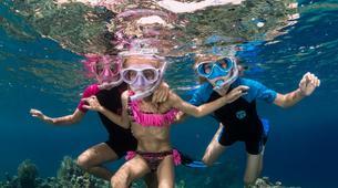 Snorkeling-Antibes-Excursion en bateau et randonnée palmée au Cap d'Antibes-4