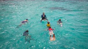 Snorkeling-Le Gosier-Excursion Snorkeling au Gosier, Guadeloupe-1