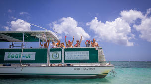 Snorkeling-Le Gosier-Excursion Snorkeling au Gosier, Guadeloupe-6