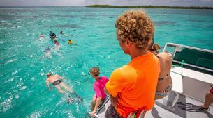 Snorkeling-Le Gosier-Excursion Snorkeling au Gosier, Guadeloupe-3