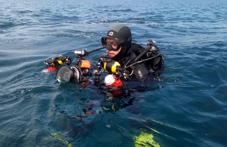 padi adventures in diving manual pdf