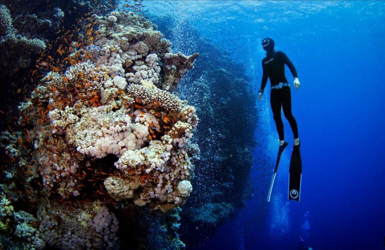 RAID and SSI freediving courses in Cebu