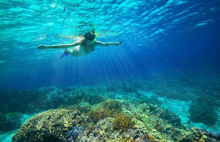Snorkelling excursion in El Arenal, Mallorca