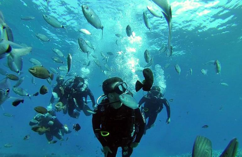 Snorkeling plongée sous-marine ile de santorin