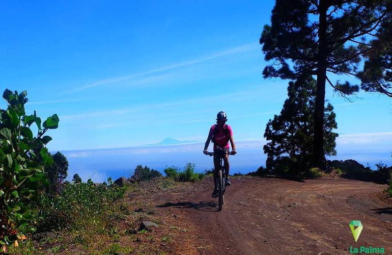 Mountain biking excursions in La Palma