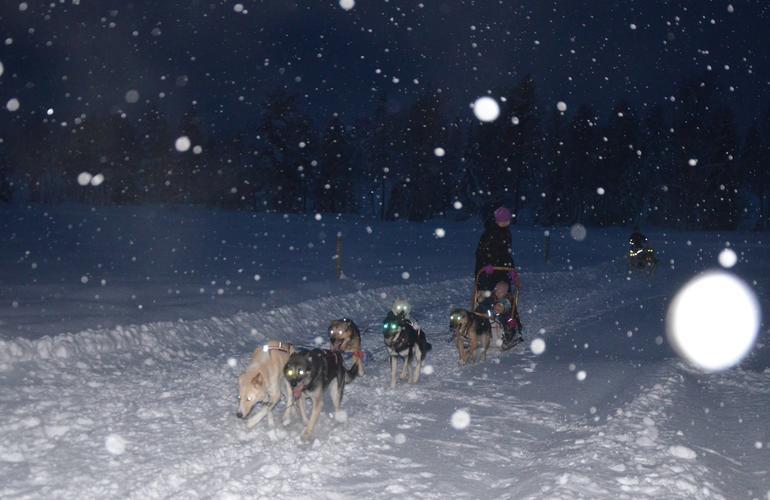 dogging norway escort trondheim