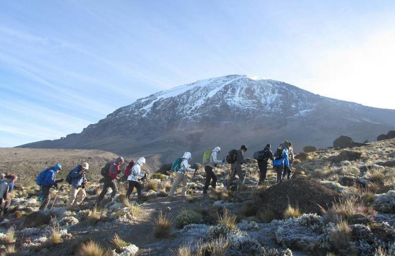 Trekking au mont Kilimanjaro