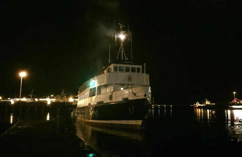 Northern Lights Boat Trip From Reykjavik