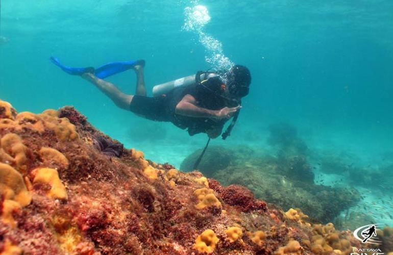 Plongée sous-marine à Pattaya