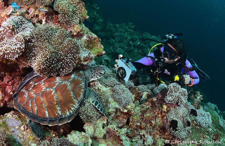Koh Lanta plongée sous marine