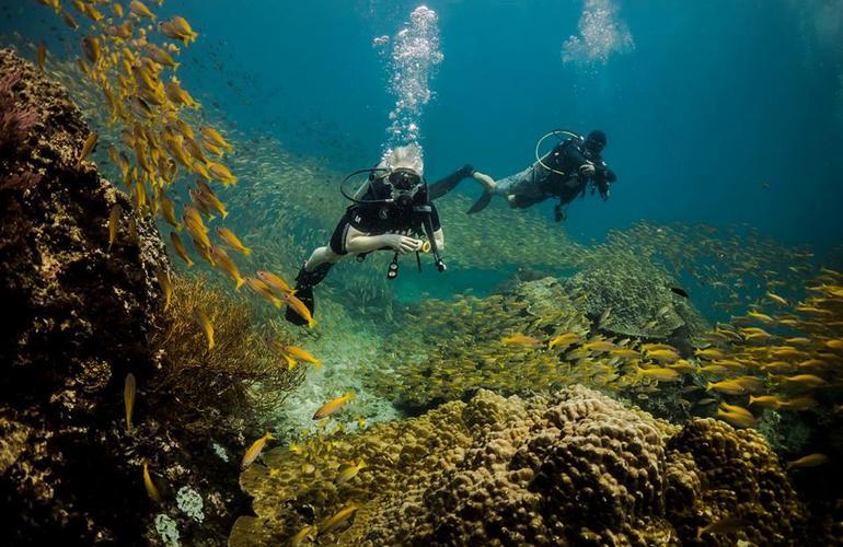 Koh Racha Yai plongée sous marine