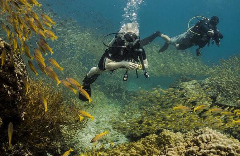 plongée sous marine Thailande
