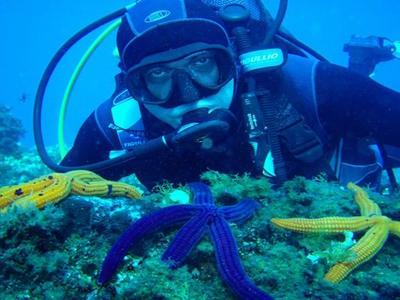 Shipwreck adventure dive in Corfu