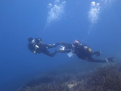 PADI Open Water diving course in Amorgos