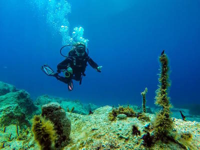 Discover scuba diving in Ithaca