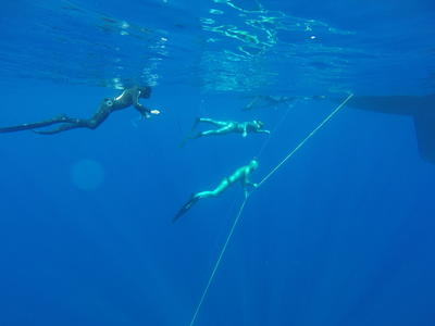 7D/6N freediving and spearfishing cruise in the Sporades