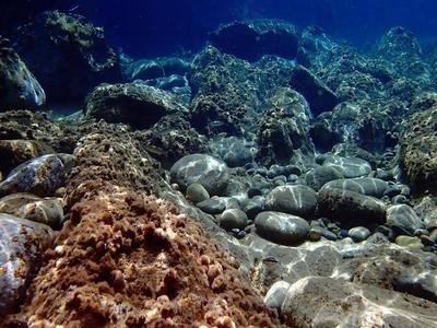 Snorkeling excursion in Halkidiki