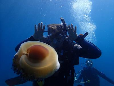Discover Scuba Diving in Halkidiki