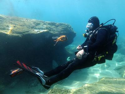 Guided adventure dives near Heraklion, Crete