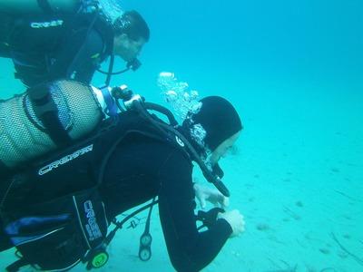 Discover Scuba Diving in Zante