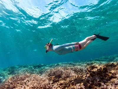 Snorkeling excursions in Kefalonia