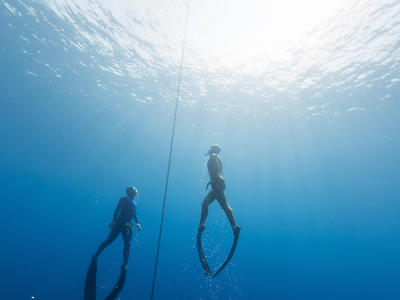 Discover Freediving in Kefalonia