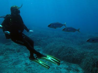 PADI Open Water course and accommodation in Alonissos