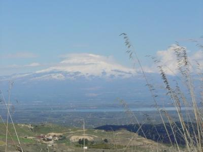 Beginner mountain biking excursion near Mount Etna