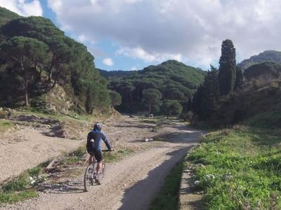 Beginner's mountain bike excursions near Messina, Sicily.