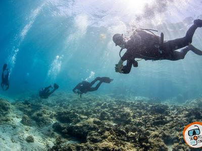 Scuba Diving: 3 Adventure dives in Skopelos