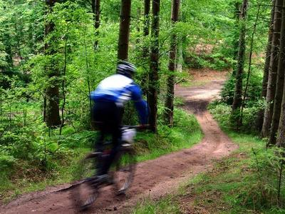 Mountain biking excursions in Mount Etna