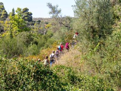 Hiking in Neos Marmaras and Parthenonas, Halkidiki