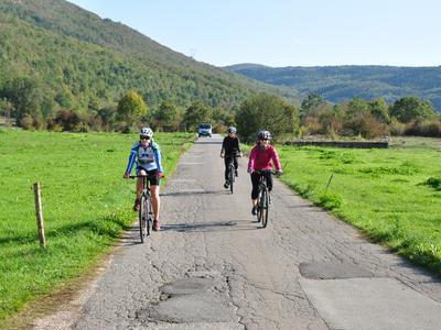 Cycling Tour of Sipan Island near Dubrovnik